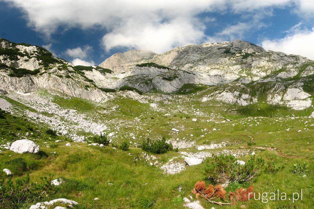 Bilijegov do - Durmitor